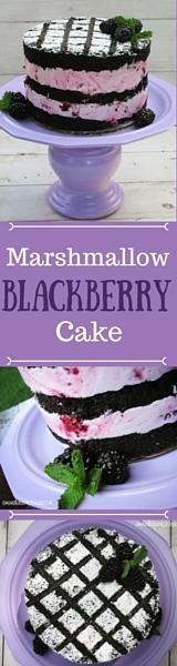 Blackberry marshmallow sizzle cake pinterest graphic